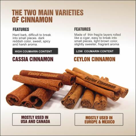cinnamon vs.